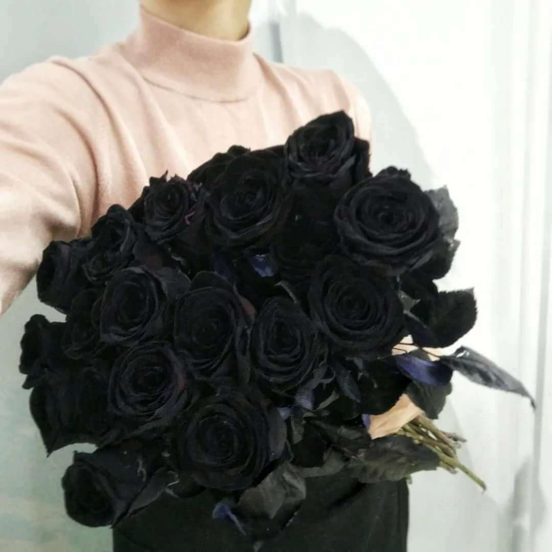 Черная роза в руке фото