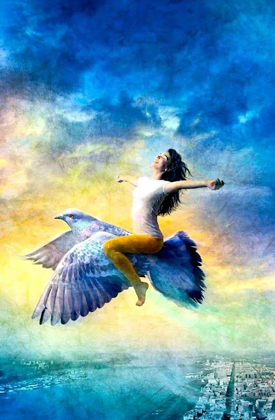 покупкой двухуровневой картинка человек летит на птице хотели