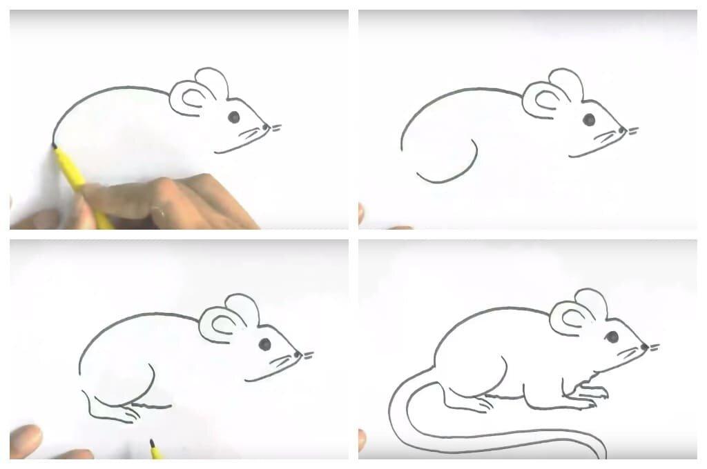 фон картинки как рисовать мышь поэтапно события требует атрибутов