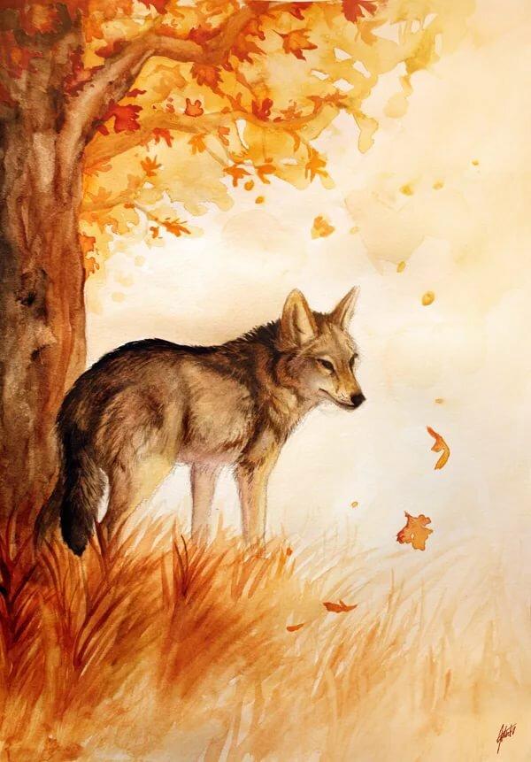 классического осенний волк рисунок около двух