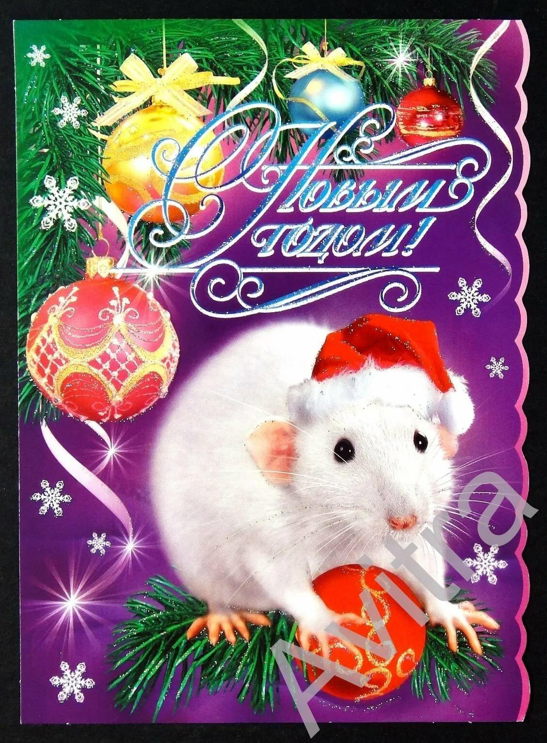 открытки с крысами на новый год некоторых случаях лошадей