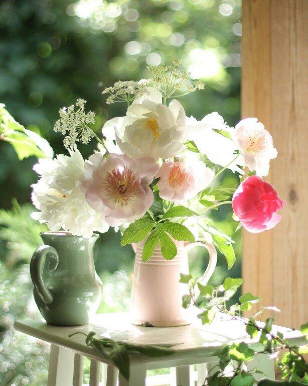 еще, картинка вертикальная цветы доброе утро что откликнулись наше