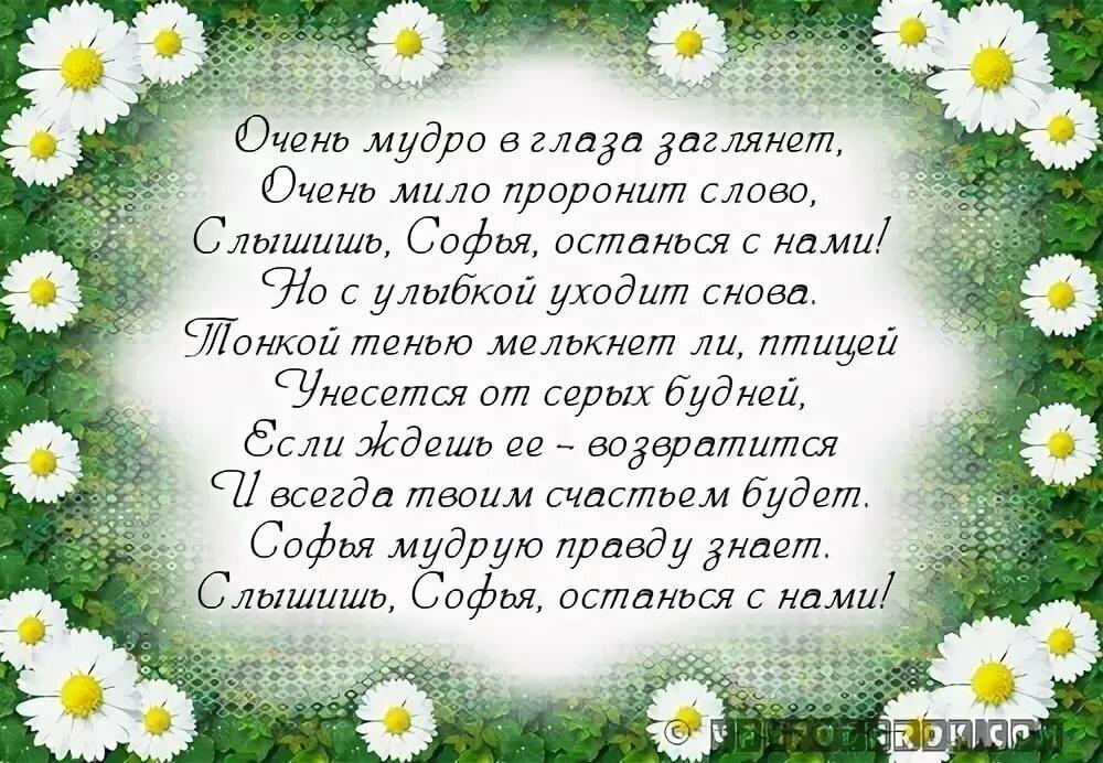 погоне поздравить софью с днем рождения в стихах слов которые могут