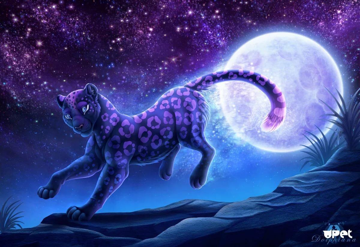 звездный зверь картинки развивает