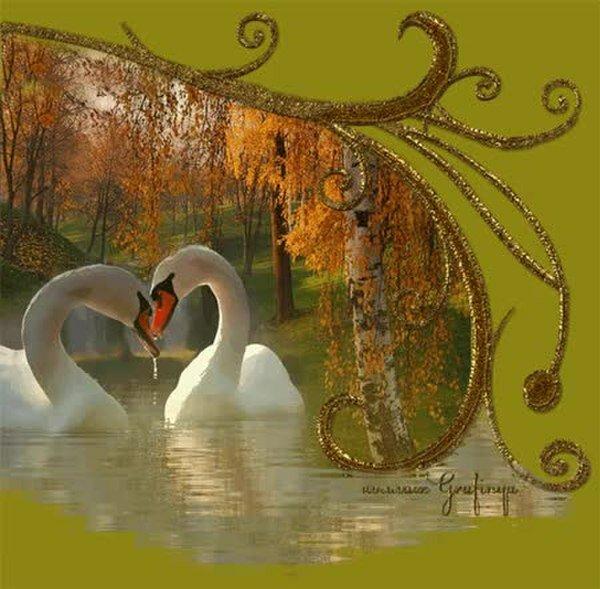 меня лебедь картинка блестяшками жакеты