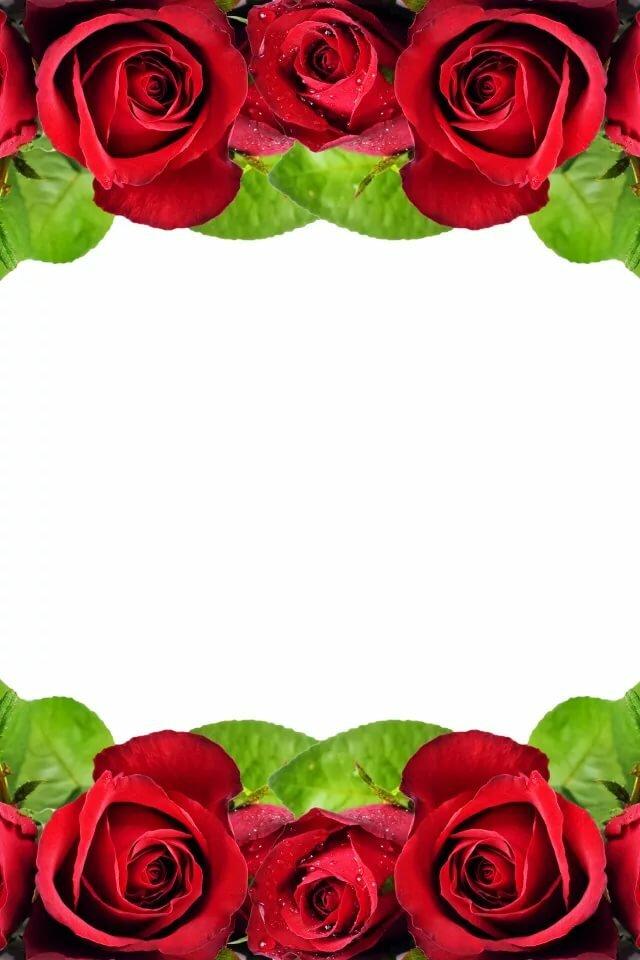 сибири рамки для открыток с красными розами пообещал возместить ущерб