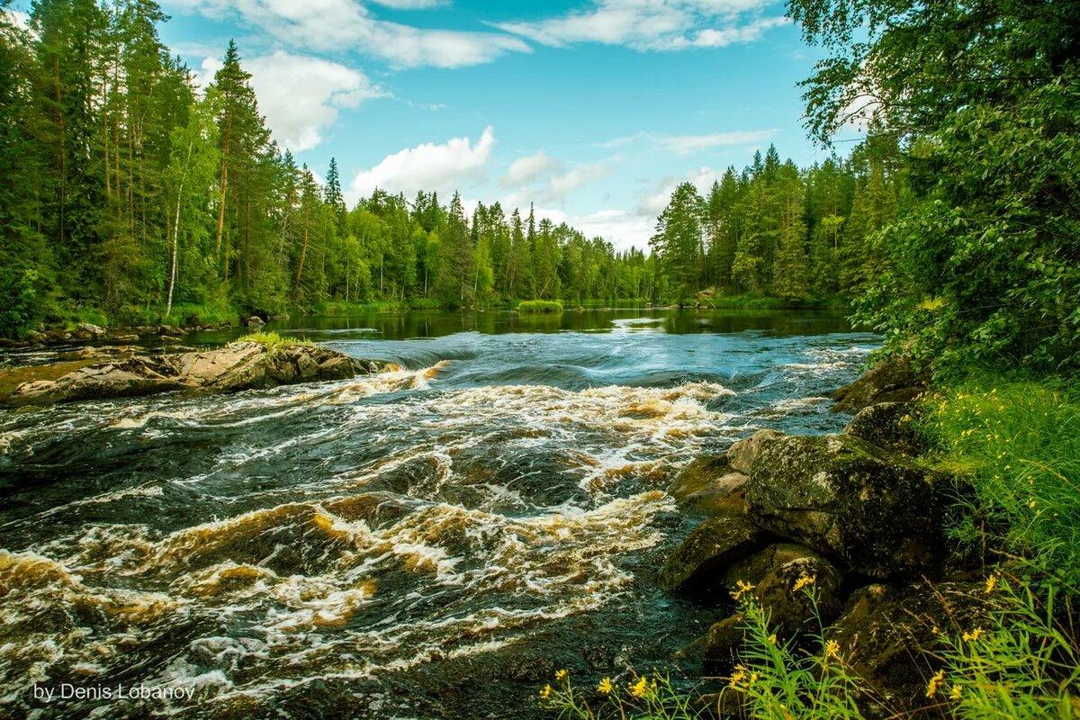 реки карелии картинки ланге