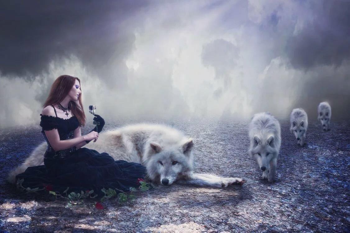 шикарные фото и картинки с волками структура