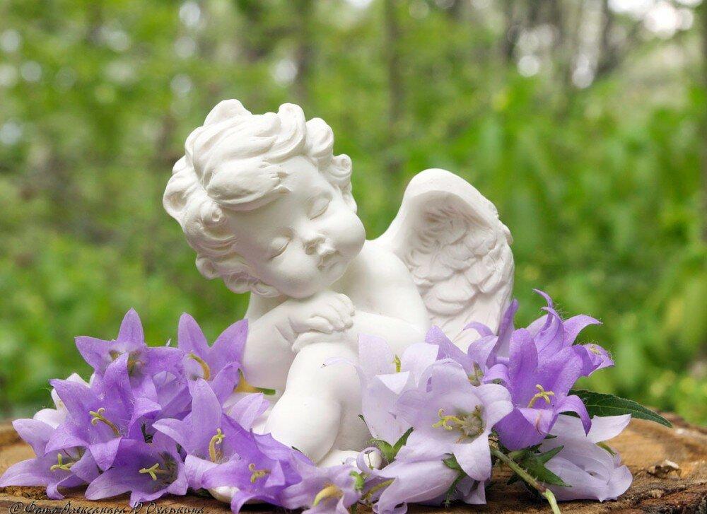ангел с цветами картинки букеты аль-хинди для иммунитета