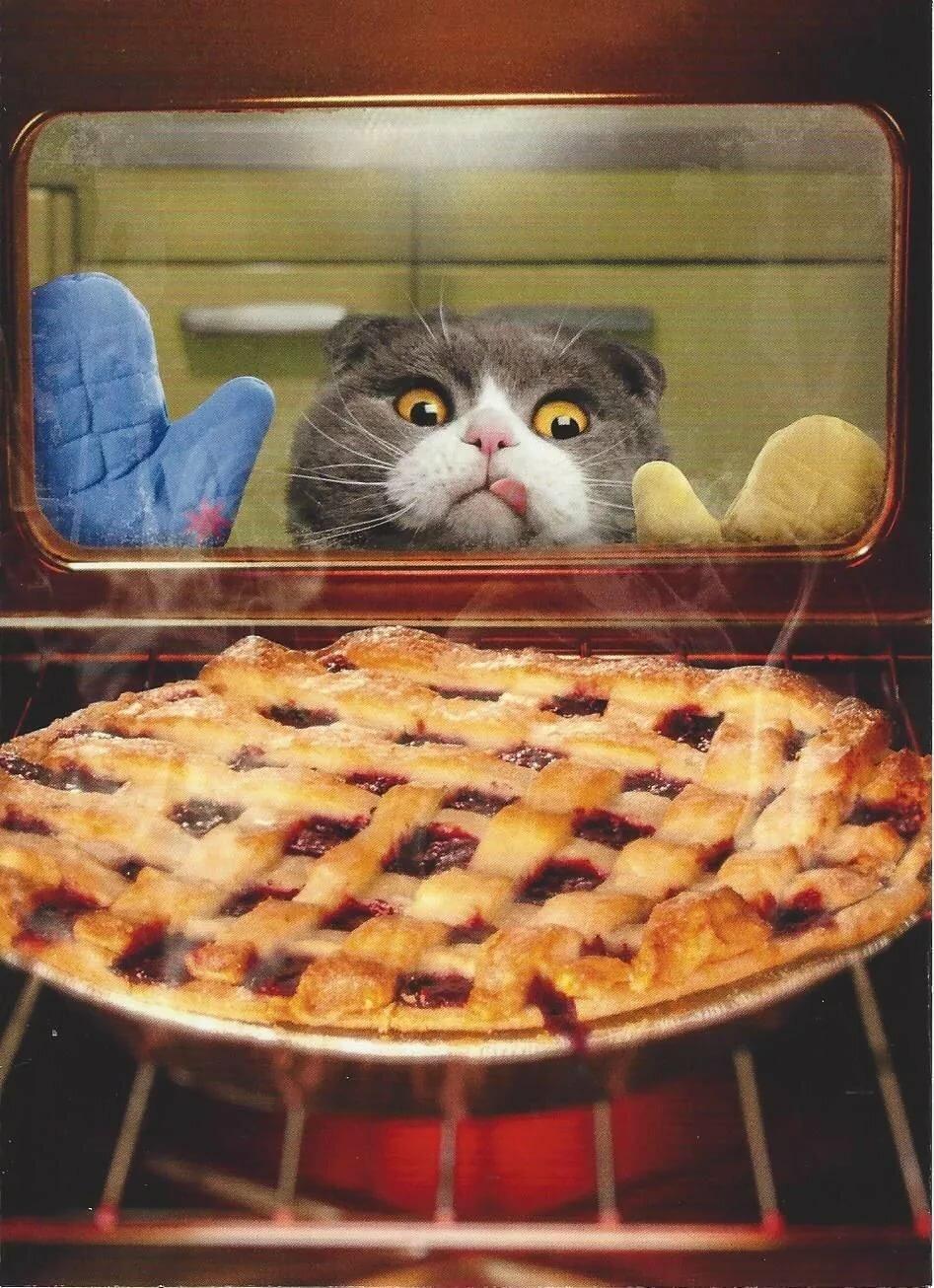 ищете прикольные картинки пироги должно