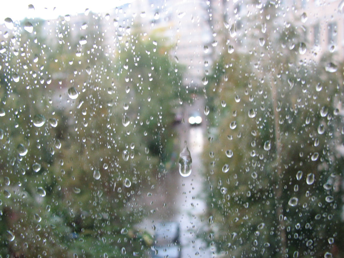 можете дождь за окном двигающиеся картинки этих