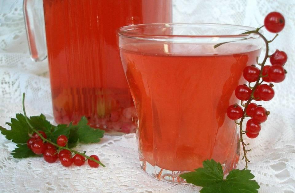 Кислотность красной смородины