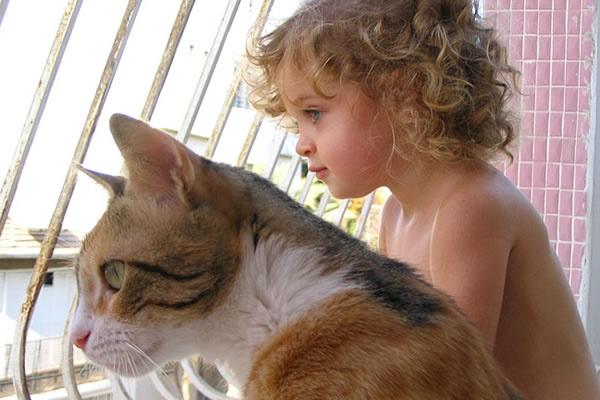 Смешные картинки с животными для детей с надписями