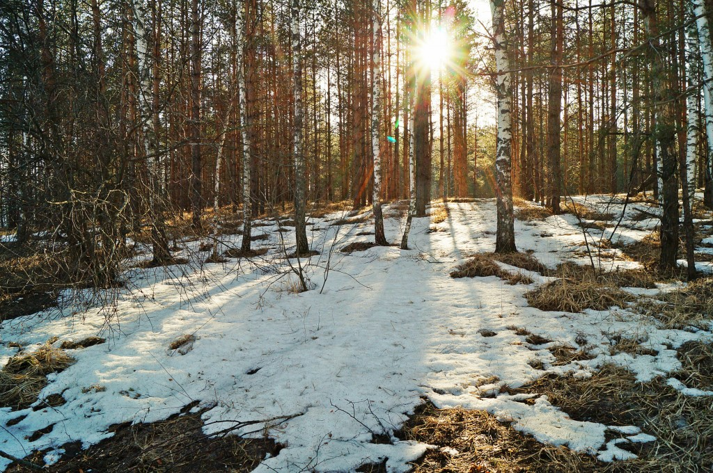 In the daytime of March 24-26 the air temperature will go down by 5-6 degrees