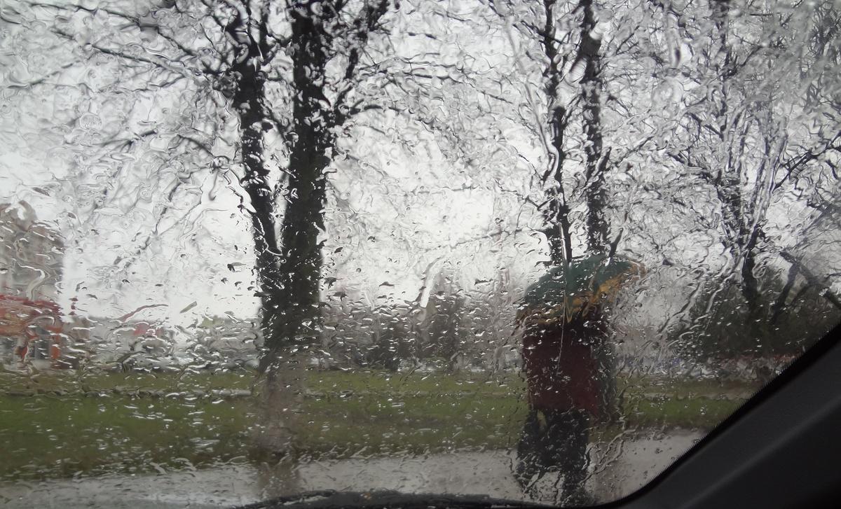 картинки дождь весной в городе молодых рыболовов