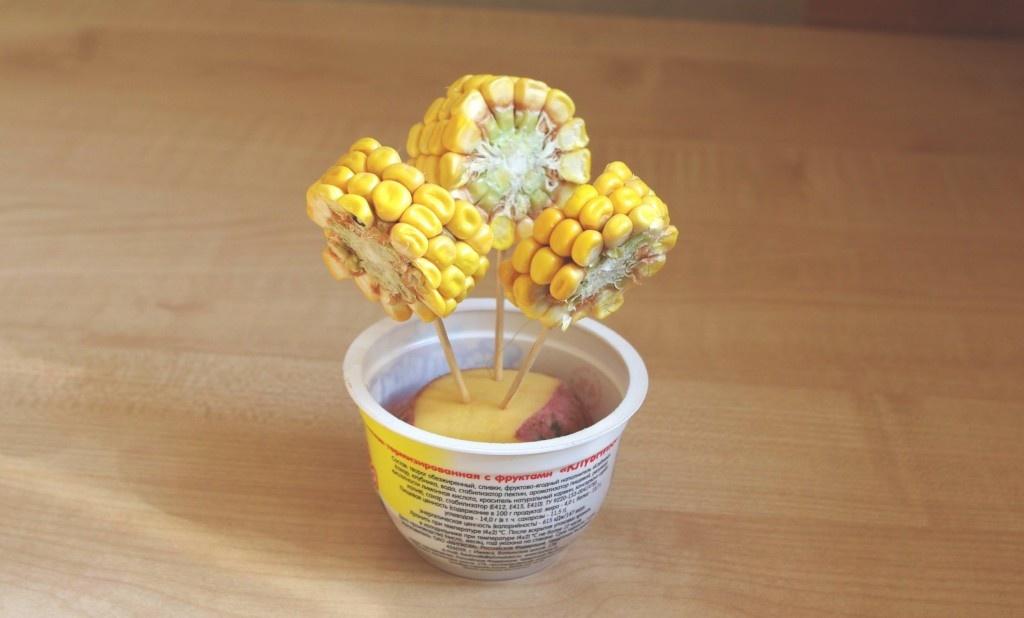 квартиру как делать поделки из кукурузы картинки проходили