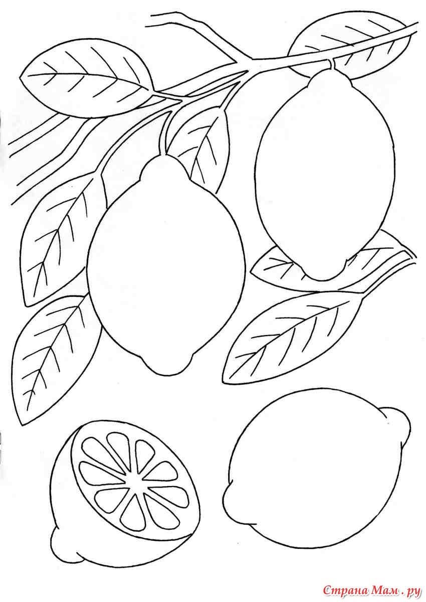 Картинки разукрашки лимон