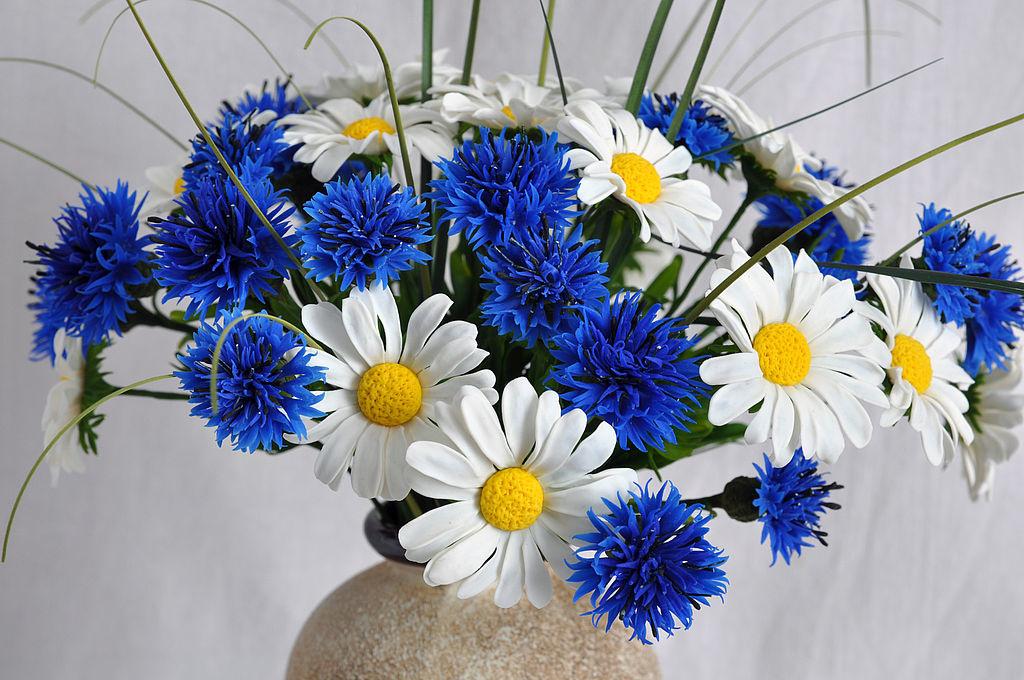 Бумажных цветов, открытка васильки