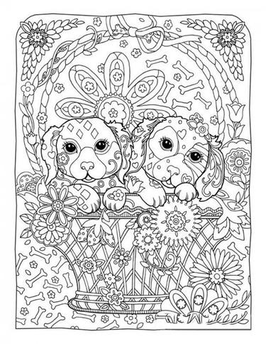 50 карточек в коллекции «Раскраски антистресс с собаками ...