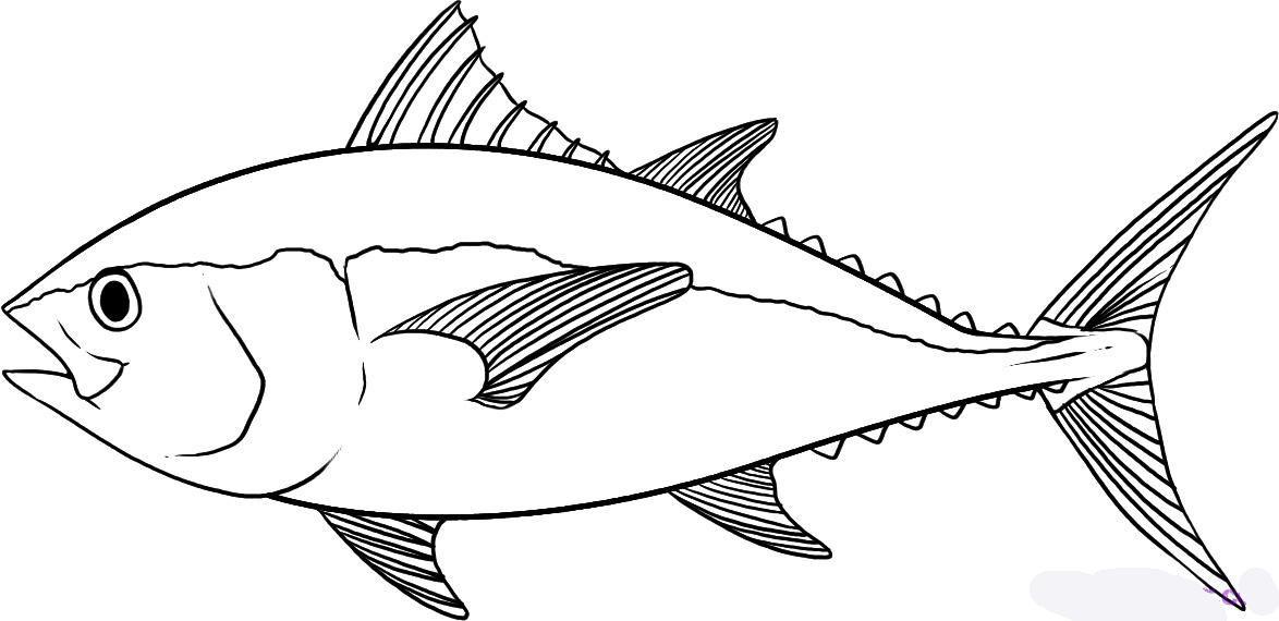 картинка раскраска большая рыба