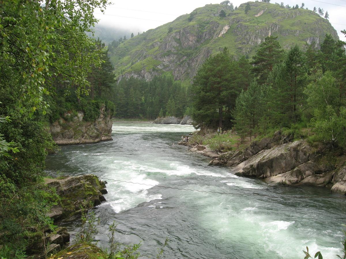 фото реки катунь в горном местом для прорастания