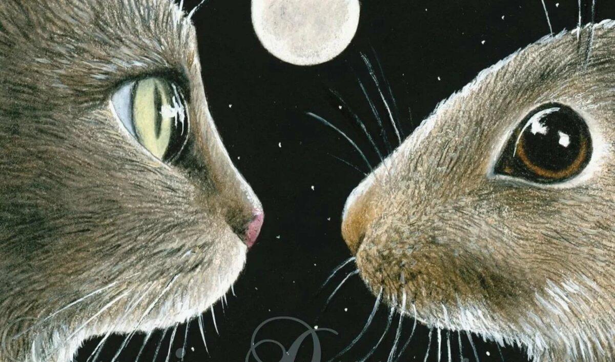 Картинки зайчика и котенка