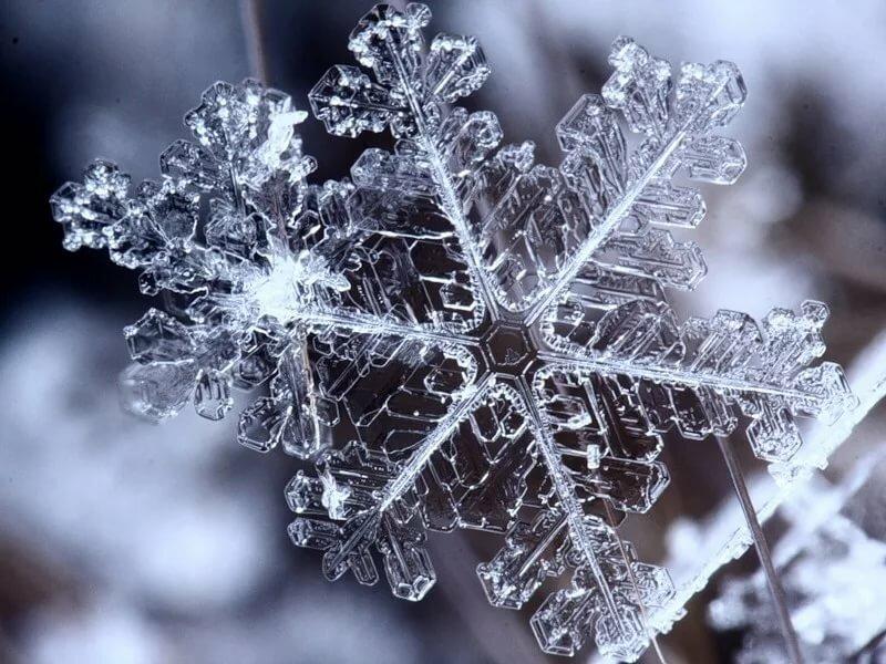 картинки снежинка люблю