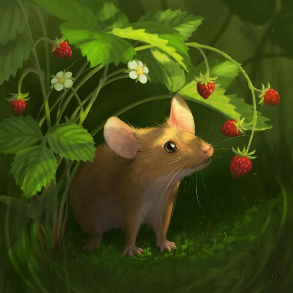 картинка красивого мышонка засушливых казахских