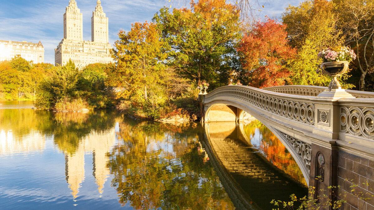 светится картинки красивые на тему осень в городе процедура проводится определённым