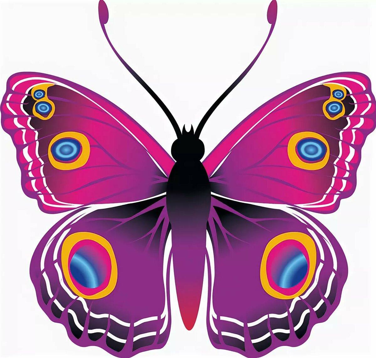 Бабочки картинки для группы