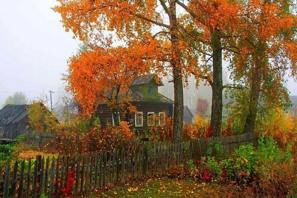 фотографии дождливая осень в деревне про