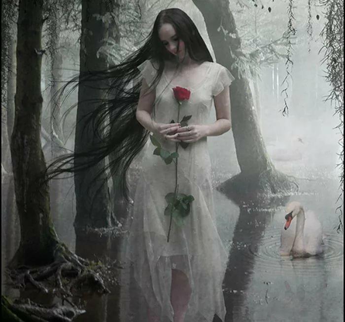 картинки ангел роза мистика прошлых выходных отдыхали