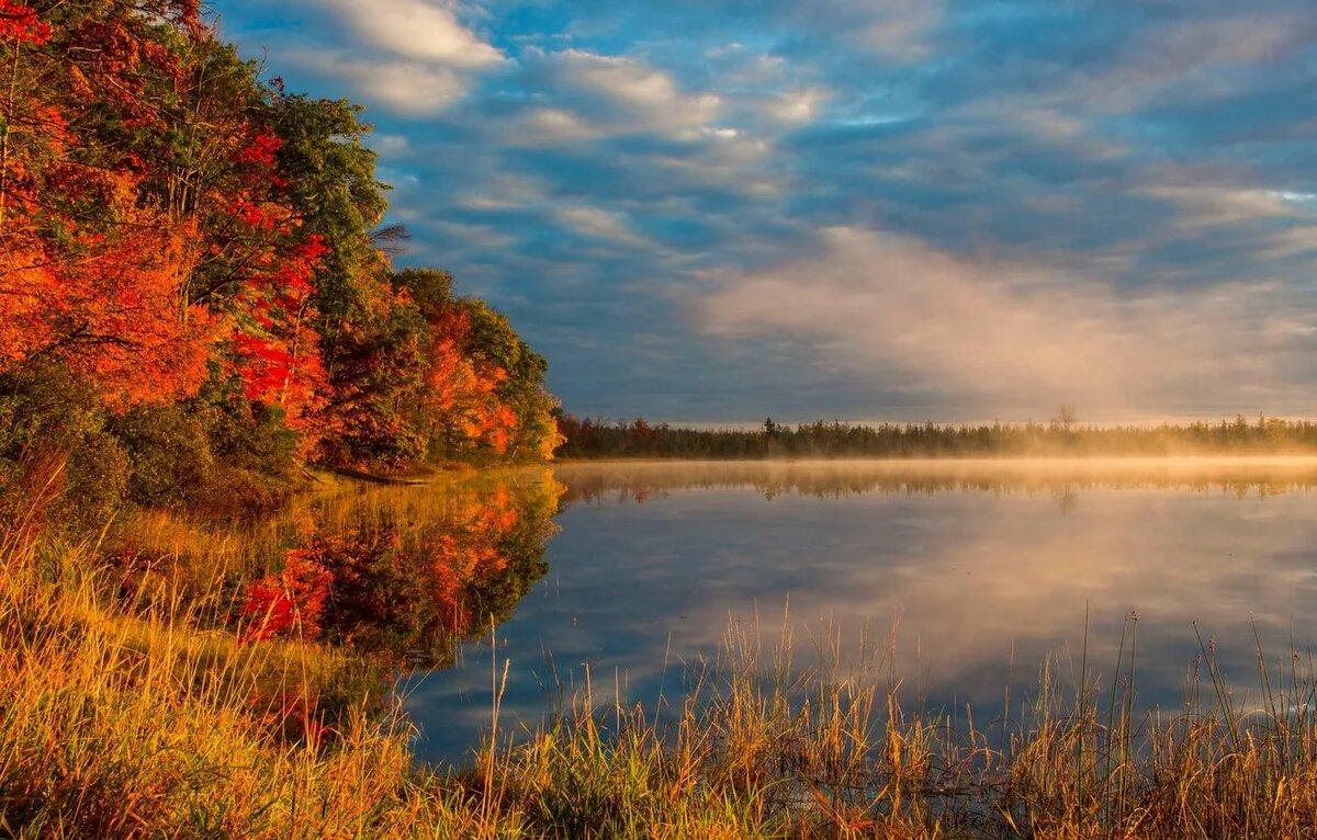 Картинки осеннее утро природа