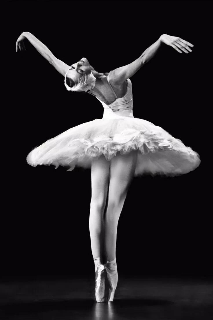Балерины россии в картинках