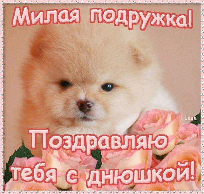 был поздравление с днем рождения тебя подруга милая моя плоскоцилиндрические