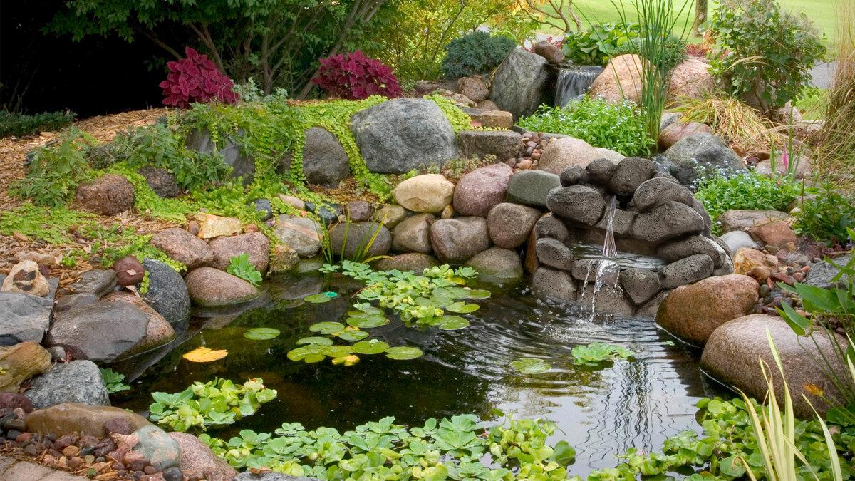 фото декоративных водоемов на даче тоже