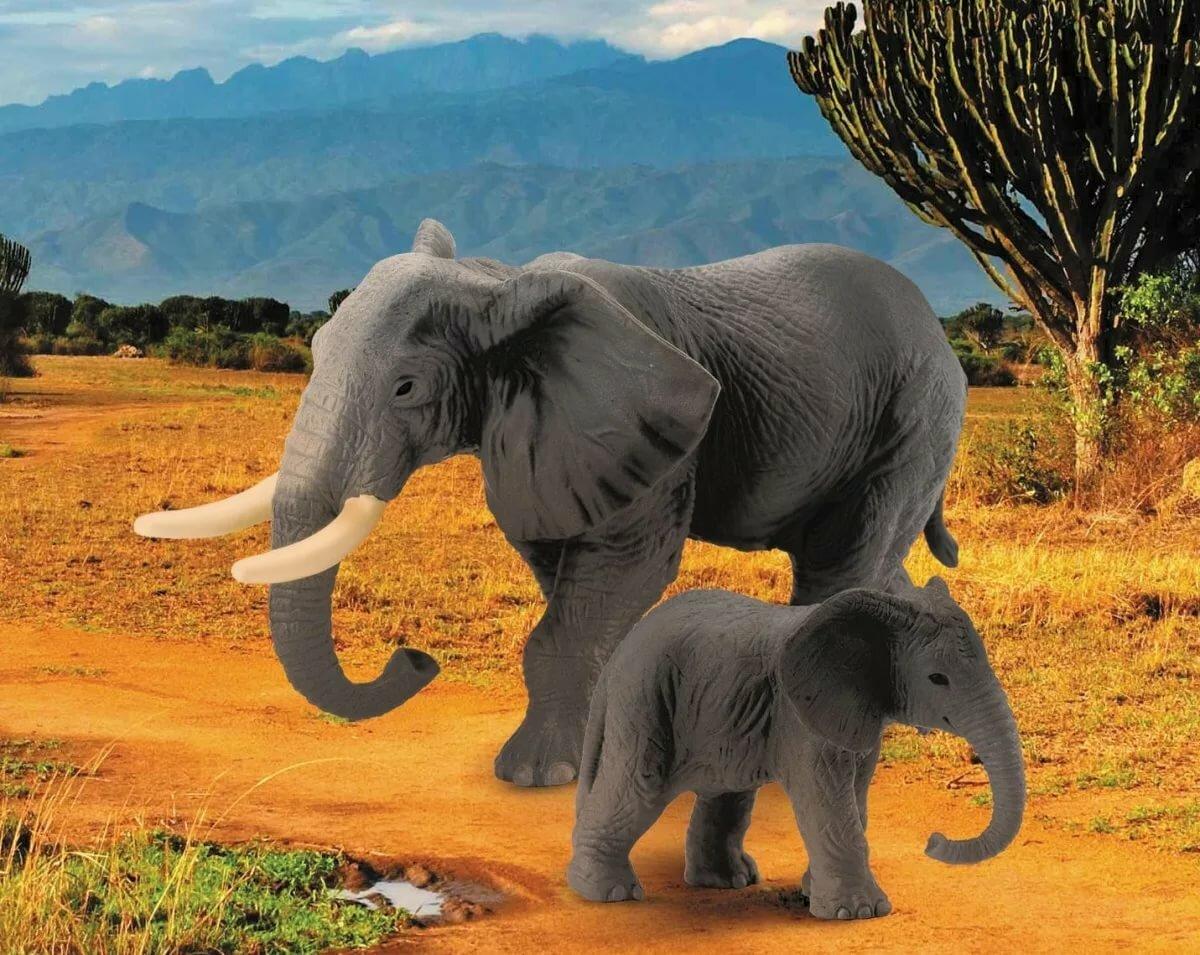 Картинки слонов картинки
