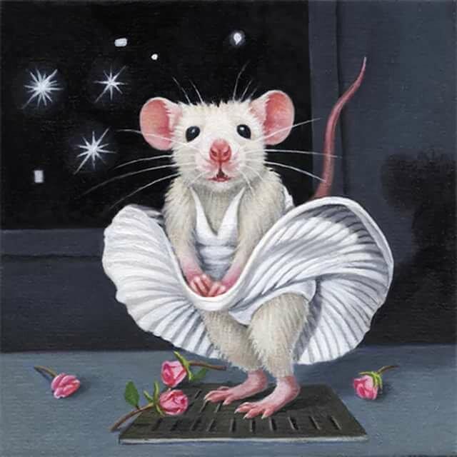 Блестящие картинки крыс