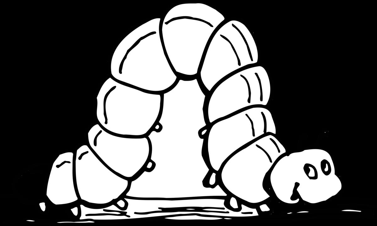 Картинка раскраска гусеница