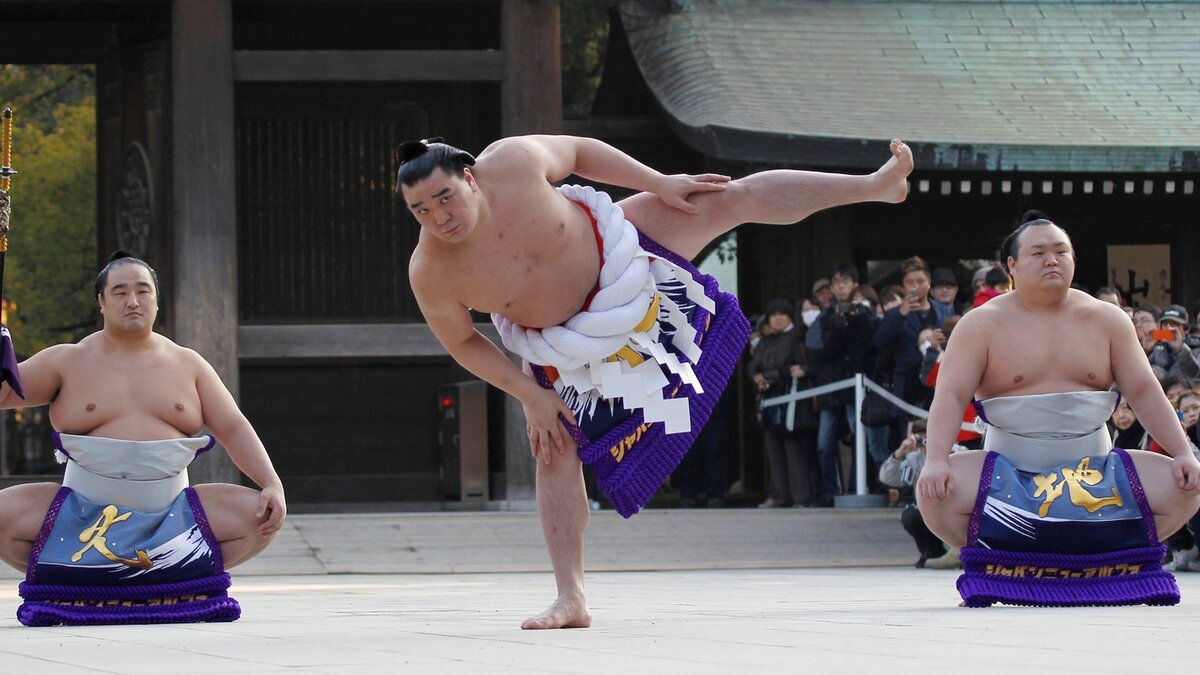 еще картинки сумо каратэ год