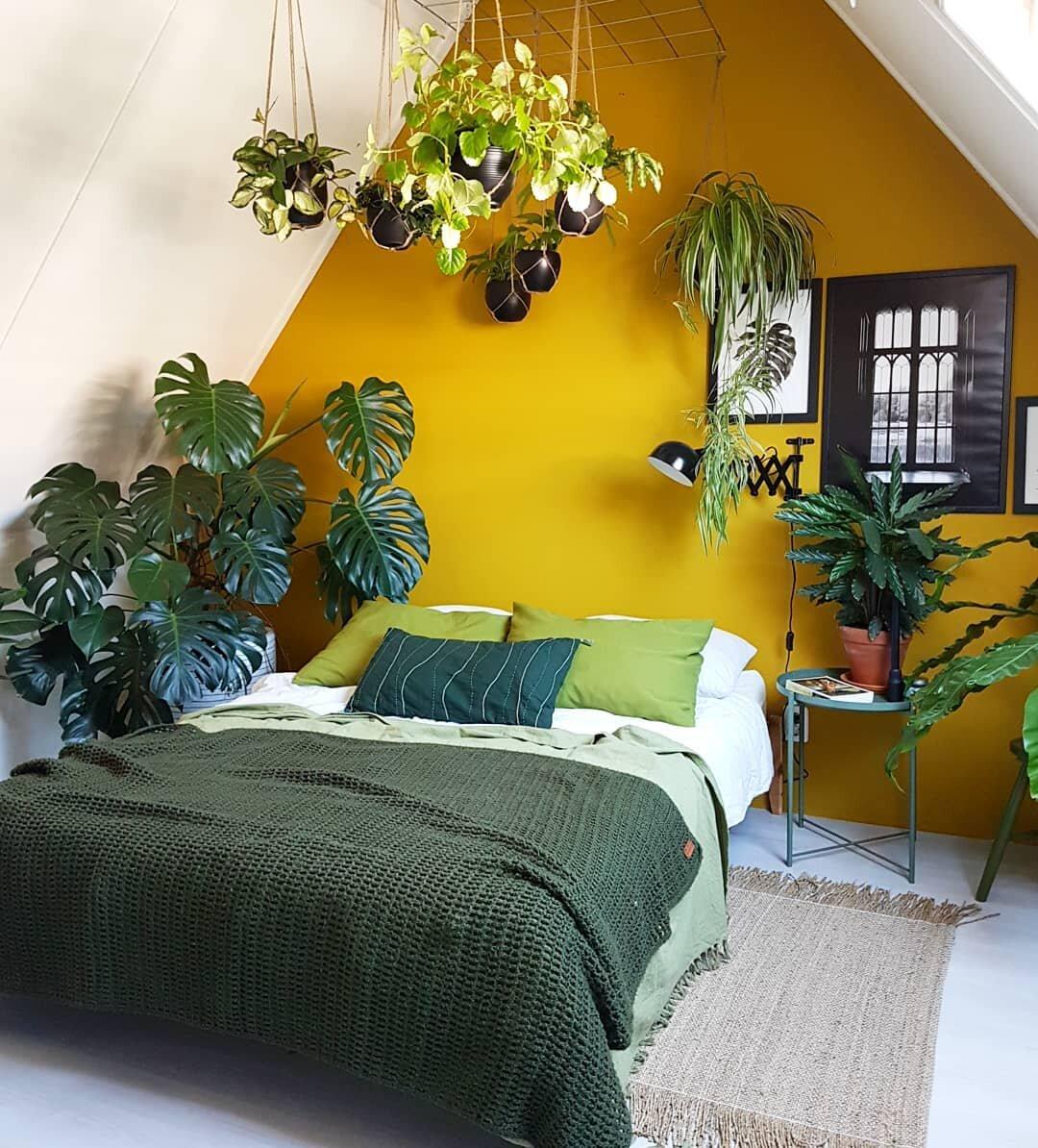 разделе картинки спальни растения чего столкнулся небанальной