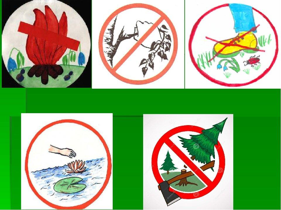 Берегите растения плакат окружающий мир