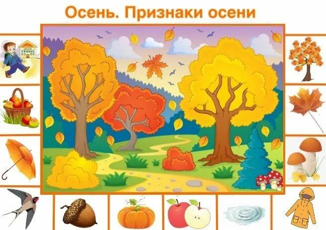 Признаки осени картинки для детского