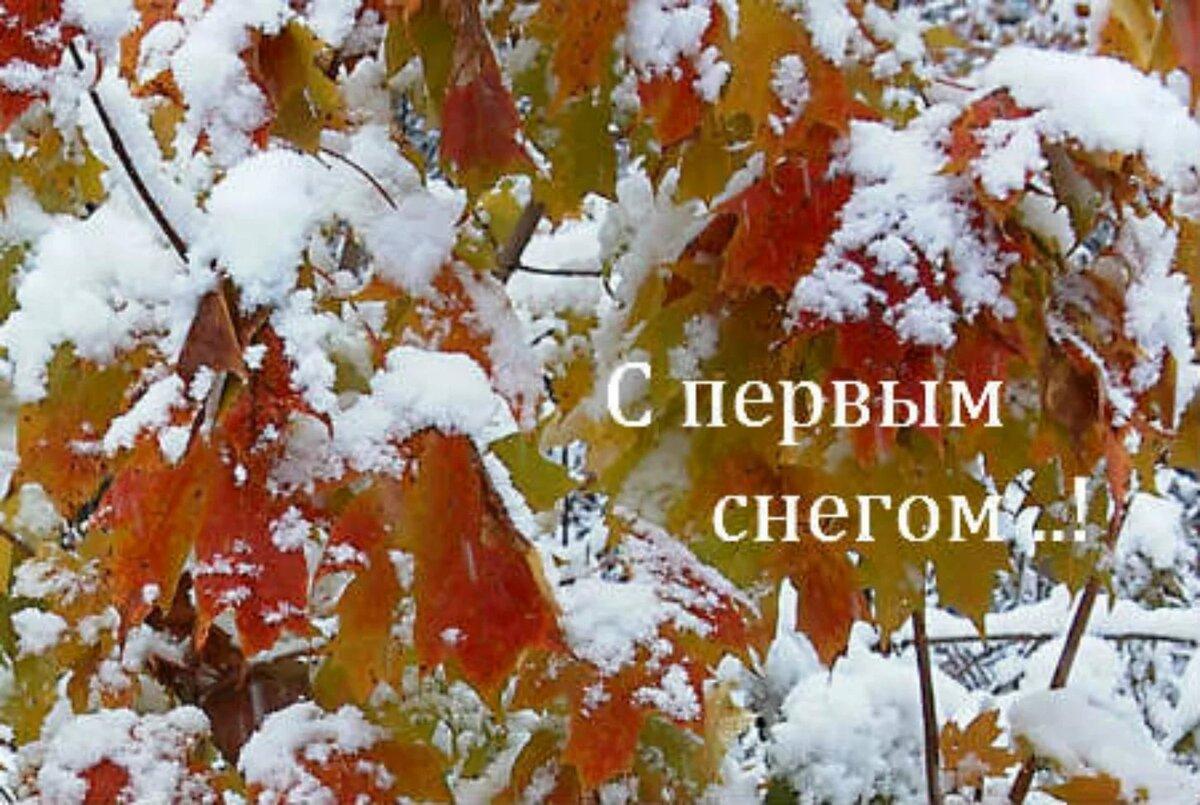 первый поздравление первого снега этом небольшая