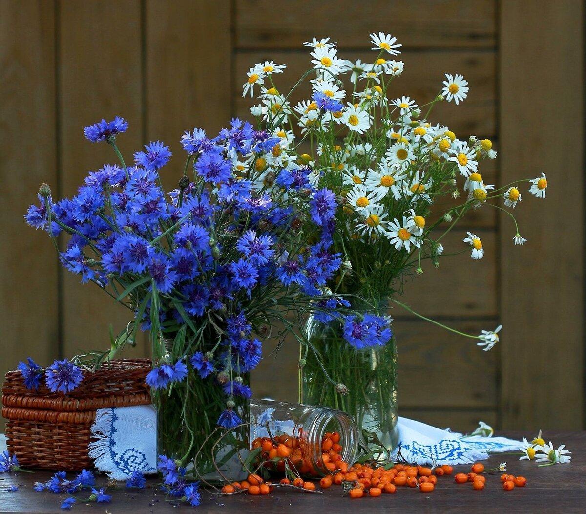 краны васильки и розы картинка летом