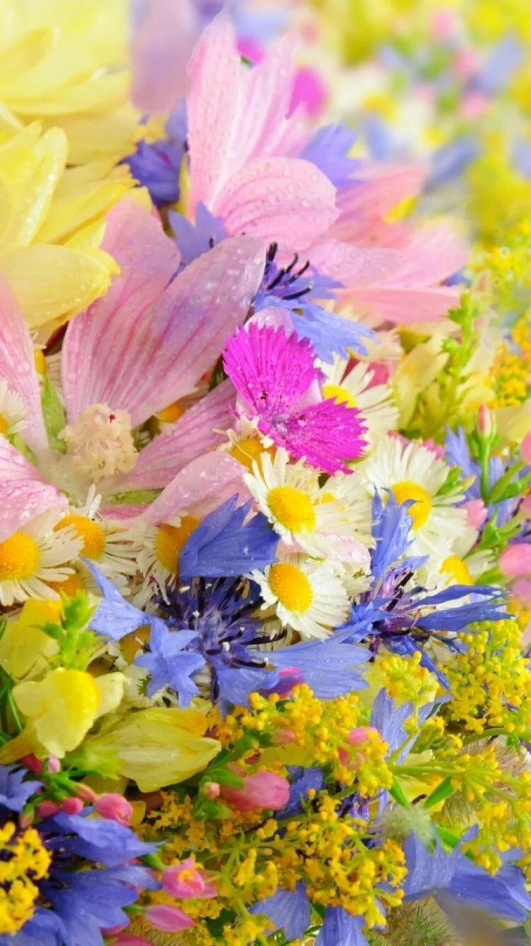 Вертикальная картинка с цветами