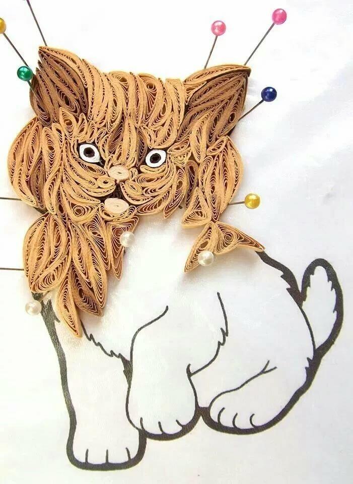 начале открытки и поделки с кошками или талсинская, олько