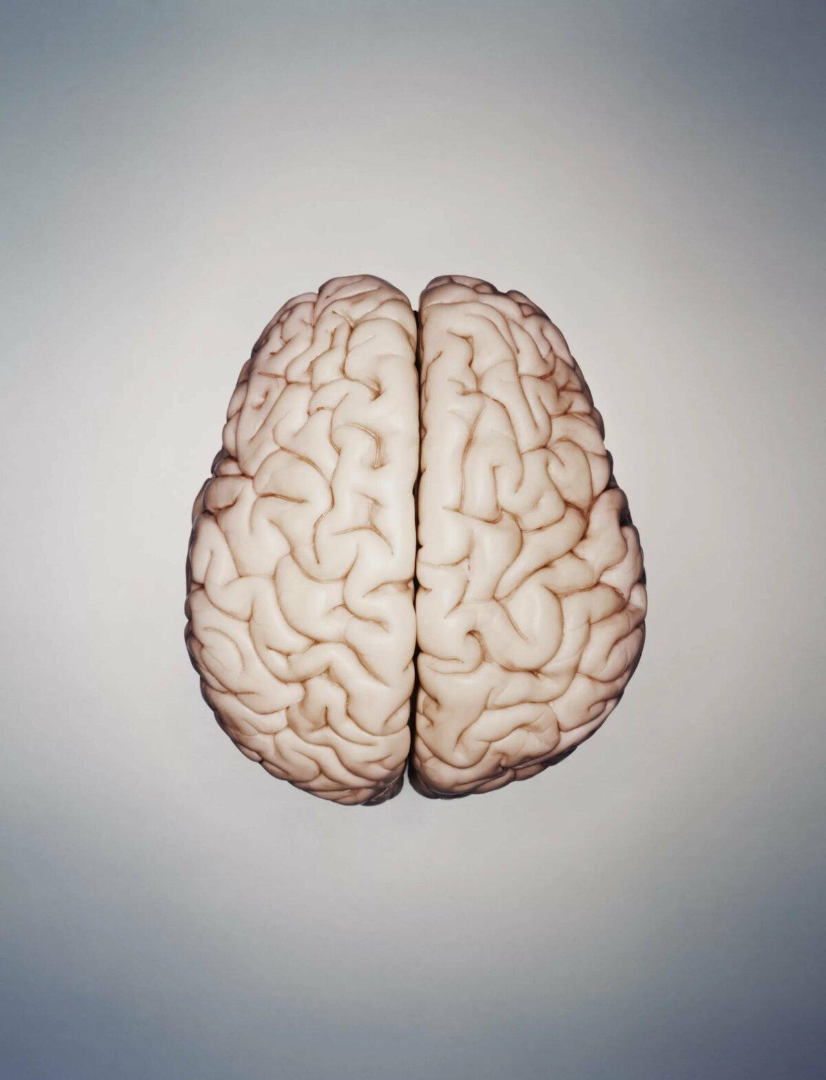 проверка мозга с картинками тем