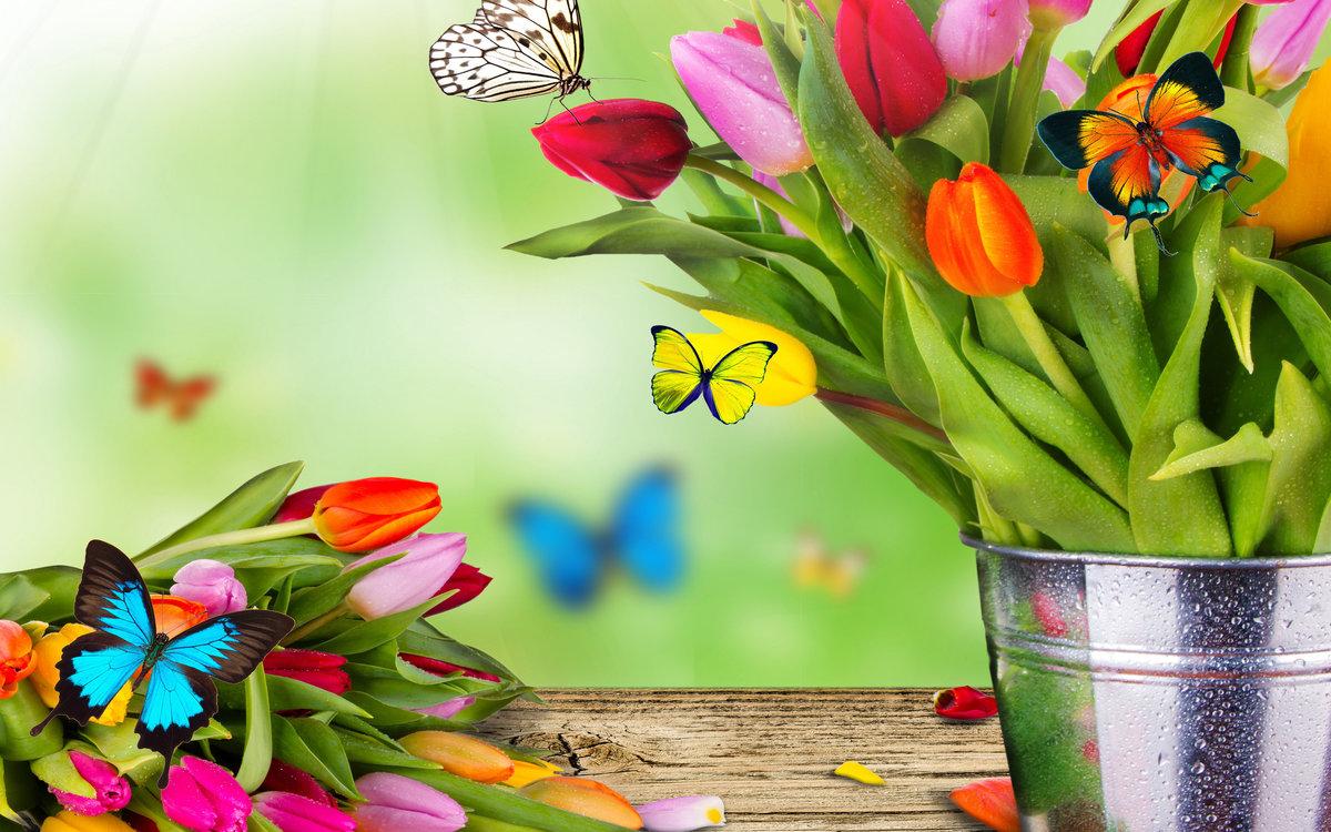 Открытка на 8 марта с бабочкой