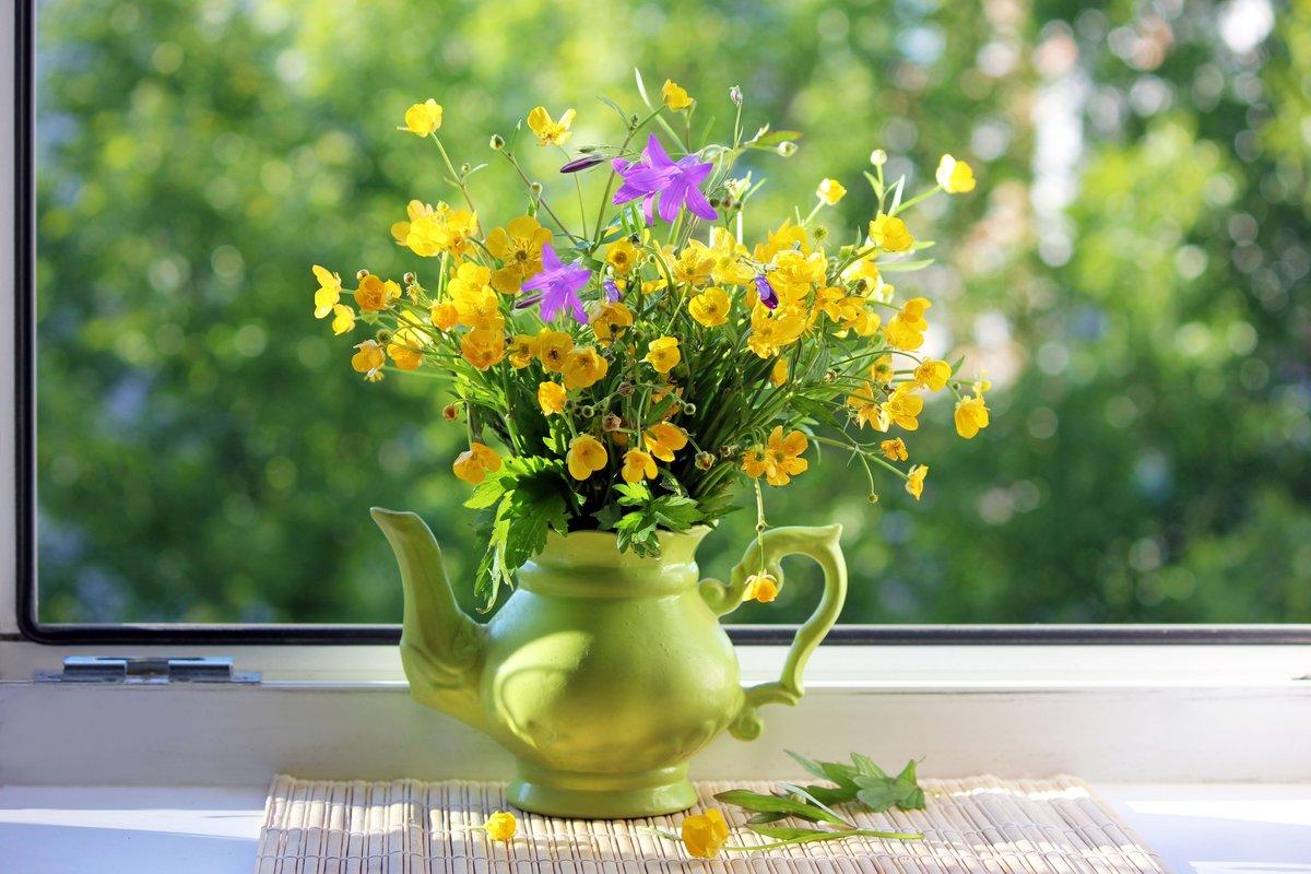 фото цветы в кувшине окно утра